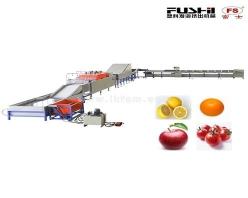 FS-QXDL型果品清洗打蜡分选机